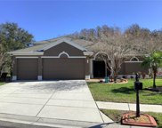 2106 Mountain Ash Way, New Port Richey image