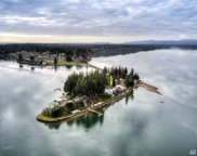 3028 Steamboat Island  NW, Olympia image
