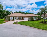 11908 Sugarberry Drive, Riverview image