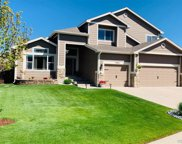 10884 Willow Reed Circle, Parker image