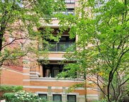 639 West Melrose Street Unit 2S, Chicago image