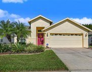 20827 Redblush Lane, Land O' Lakes image
