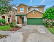 14310 Barrington Stowers Drive, Lithia image