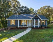 109 Cahaba Forest Drive, Trussville image
