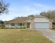 8102 Tranquil Drive, Spring Hill image