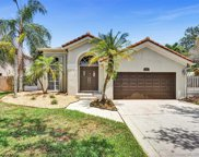 10341 Buenos Aires St, Cooper City image