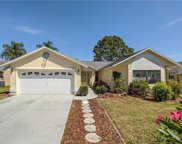 8445 Royal Hart Drive, New Port Richey image