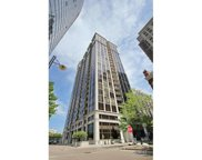233 East 13Th Street Unit 807, Chicago image