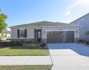 11617 Tangle Stone Drive, Gibsonton image