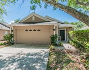 6711 Summer Cove Drive, Riverview image