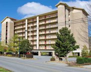 3919 S River Rd, Pigeon Forge image
