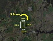 13677 Greenleaf Island, Crystal River image