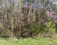Lot 335 Windfall Estates, Sevierville image