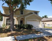 11112 Whittney Chase Drive, Riverview image