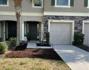 10415 Butterfly Wing Court, Riverview image