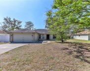 8202 Spanish Oak Drive, Spring Hill image