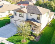 8230 Carlton Ridge Drive, Land O' Lakes image
