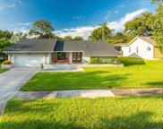 1441 Treetop Drive, Palm Harbor image