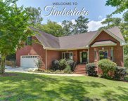 428 Lookover Pointe Drive, Chapin image