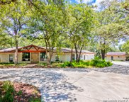 313 Forest Country Dr, La Vernia image