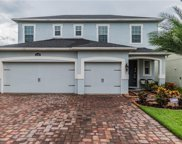 11347 Emerald Shore Drive, Riverview image