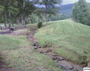 950 Caney Creek Rd, Pigeon Forge image