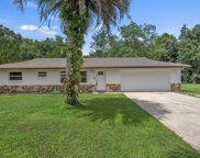 1040 N Fan Palm Point, Crystal River image
