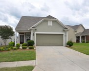 607 Larch Looper Dr, Griffin image