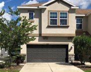 12329 Bayou Flats Lane, Tampa image