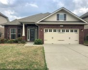 14207 Highland Meadow  Road, Charlotte image