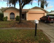 1118 Bloom Hill Drive, Valrico image