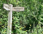 2750 Forest Glen Trail, Riverwoods image
