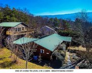 3588 Four Seasons Lane, Sevierville image