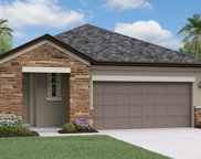 4194 Cadence Loop, Land O' Lakes image