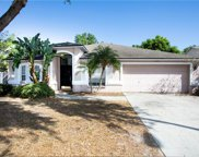 11305 Andy Drive, Riverview image