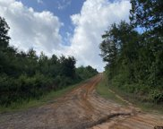 TBD County Road 394, Tatum image