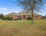 1232 Barbed Wire Way, Fort Worth image