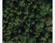 P1247 53rd Court N, Royal Palm Beach image