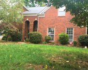 6305  Breitling Grove Place, Charlotte image