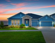 13173 Blossom Valley Drive, Clermont image