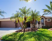 12910 Castlemaine Drive, Tampa image