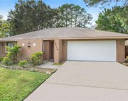 15710 Crying Wind Drive, Tampa image