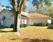 4402 Pine Meadow Court, Tampa image