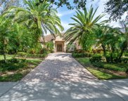 11221 Macaw Court, Windermere image
