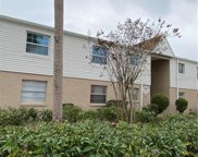 7210 N Manhattan Avenue Unit 2623, Tampa image