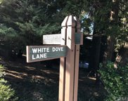 28980 White Dove Lane, Lake Arrowhead image
