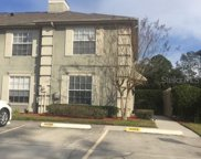 14009 Notreville Way, Tampa image