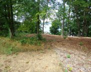 Lot 1123 and 11 Mtn View/Lakefront Pl, Baneberry image