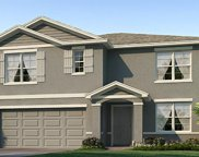 11889 Downy Birch Drive, Riverview image