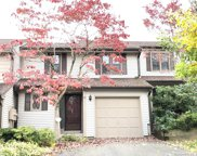 31 Tinsmith  Crossing Unit 31, Wethersfield image